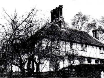 Old-Tan-1914