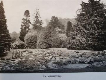 Gardens-C1911a